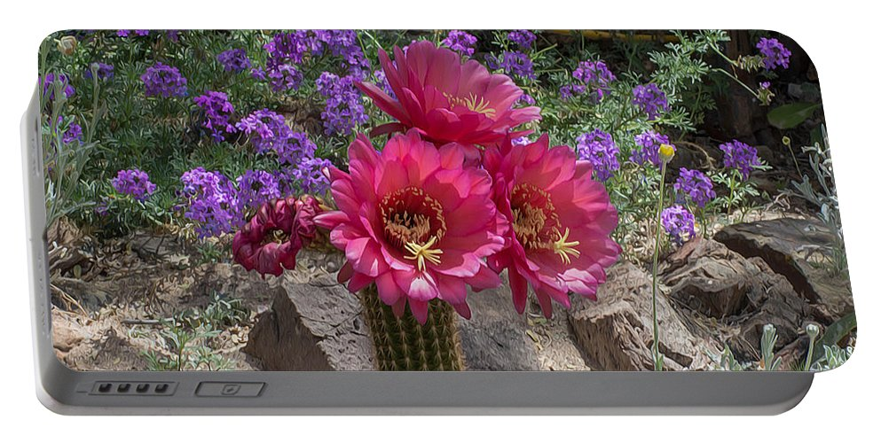 Pink Portable Battery Charger featuring the photograph Pink Cactus Torch by Michael Moriarty