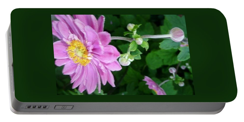 Flower Portable Battery Charger featuring the photograph Pink Flower Shiver by Susan Garren