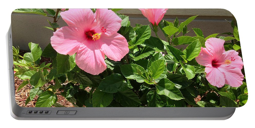 Hibiscus Portable Battery Charger featuring the photograph Pink Hibiscus by Aimee L Maher ALM GALLERY