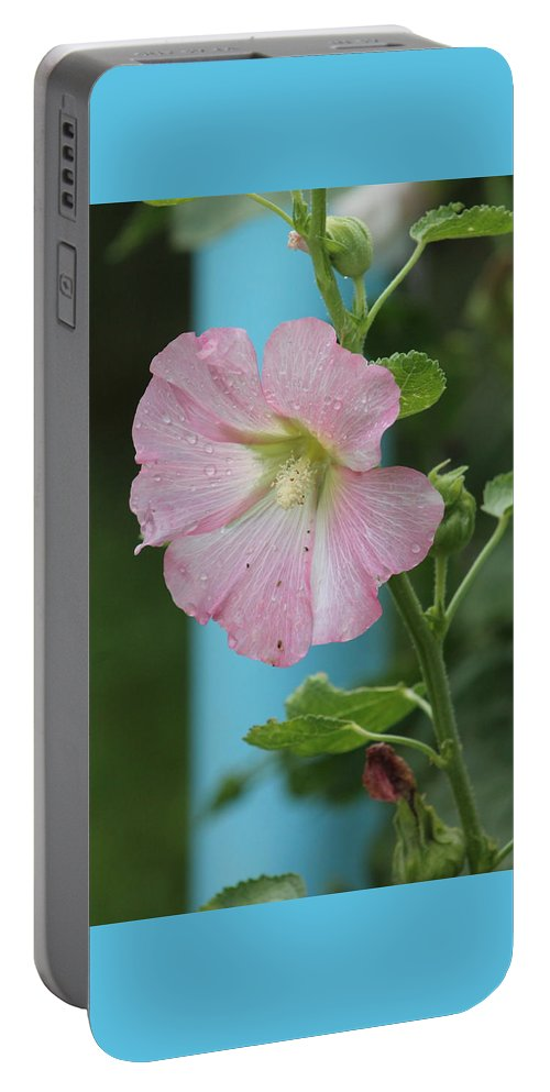 Flowers Portable Battery Charger featuring the photograph Pink Hollyhock And Rain by Wayne Williams