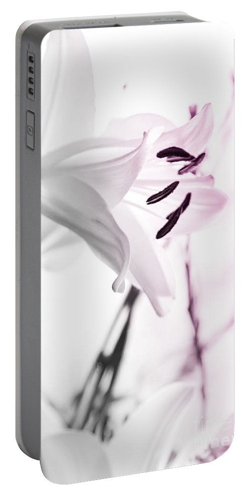 Pink Lily Portable Battery Charger featuring the photograph Pink Lily Feature by Alanna DPhoto