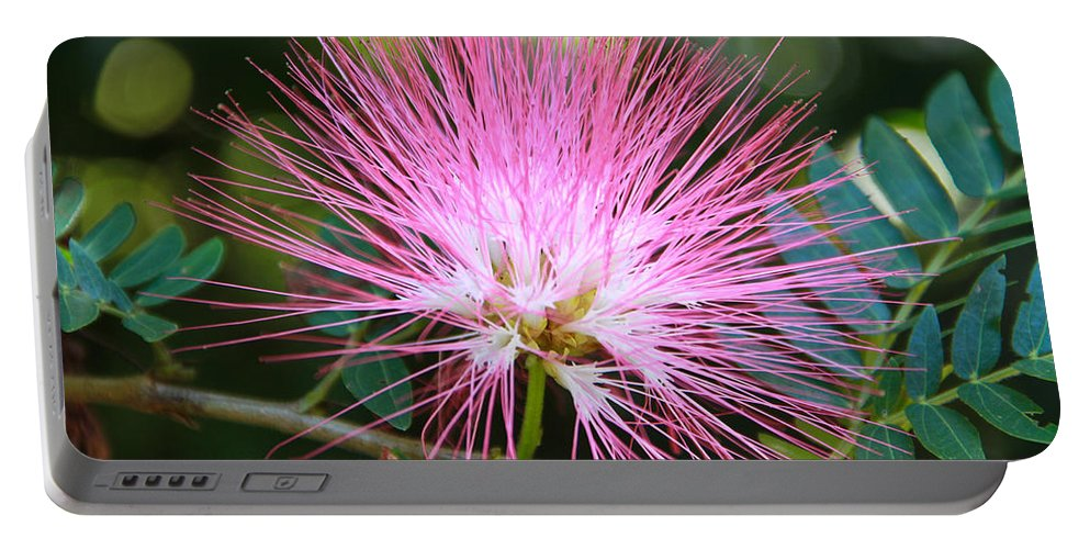 Macro Portable Battery Charger featuring the photograph Pink Mimosa Flower by Eti Reid