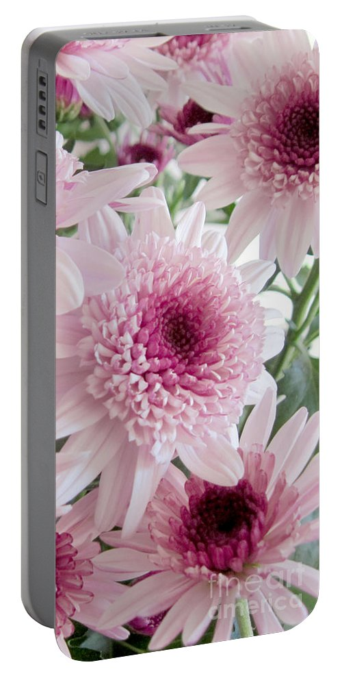Pink Portable Battery Charger featuring the photograph Pink Mums by Conni Schaftenaar
