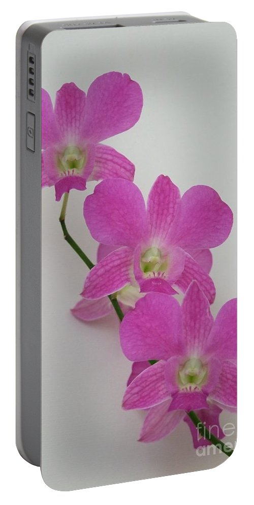 Pink Portable Battery Charger featuring the photograph Pink Orchids 1 by Mary Deal