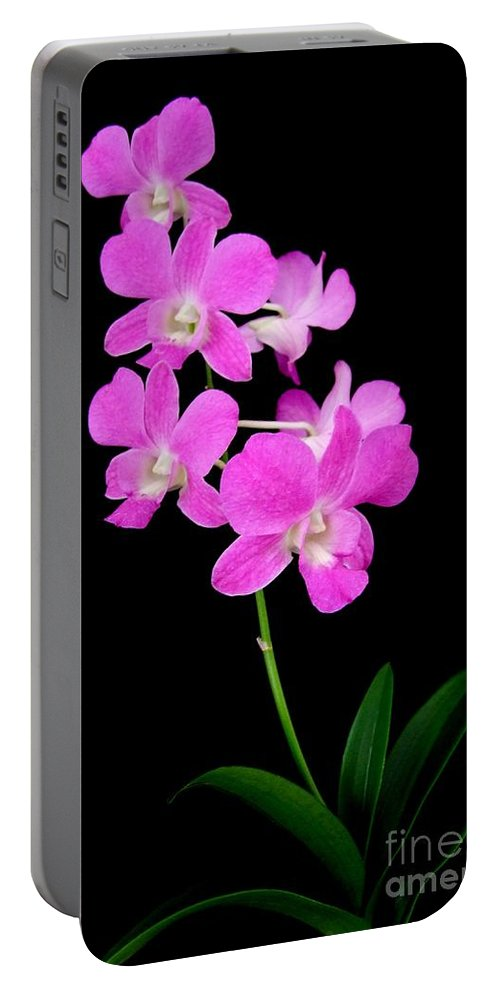 Orchid Portable Battery Charger featuring the photograph Pink Orchids 9 by Mary Deal