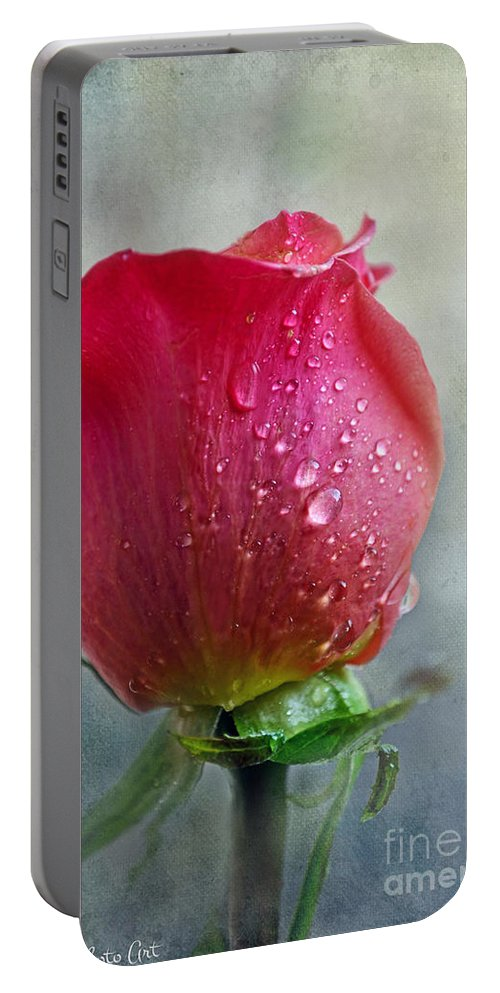 Nature Portable Battery Charger featuring the photograph Pink Rose Bud With Drops by Debbie Portwood