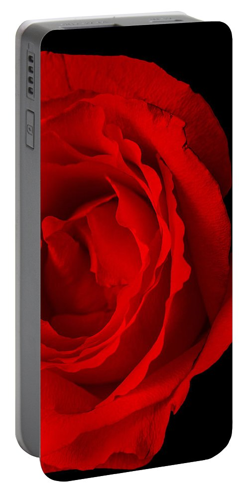 Rose Portable Battery Charger featuring the photograph Pink Rose Isolated On Black by Donald Erickson
