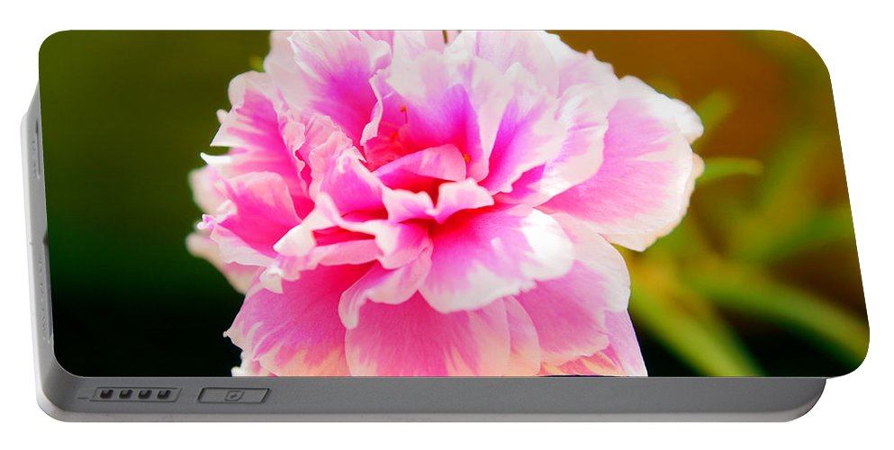 Pink Portable Battery Charger featuring the photograph Pink Rose by Kaleidoscopik Photography