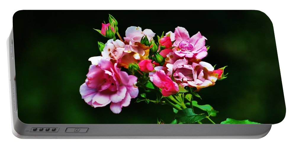 Pink Portable Battery Charger featuring the photograph Pink Roses by Chuck Hicks