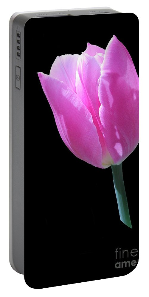 Pink Portable Battery Charger featuring the photograph Pink Tulip by Tanya Shockman