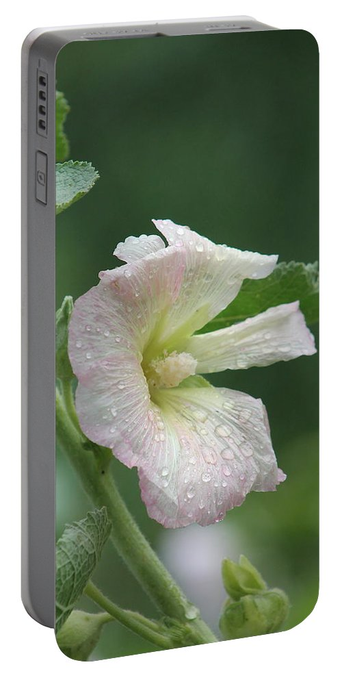 Flowers Portable Battery Charger featuring the photograph Pinkish Hollyhock And Rain by Wayne Williams