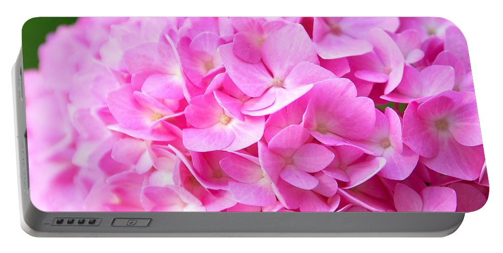 Pink Portable Battery Charger featuring the photograph Pinks by Kathy McCabe