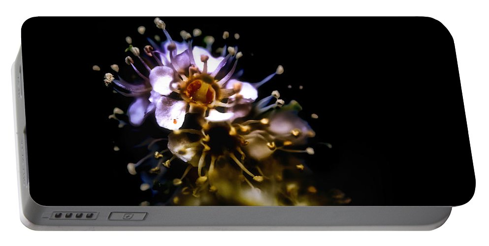 Plistils Portable Battery Charger featuring the photograph Anthers by Ramon Martinez