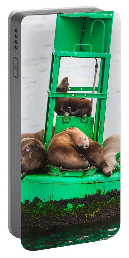 Seal Portable Battery Charger featuring the photograph Pit Stop by Scott Campbell