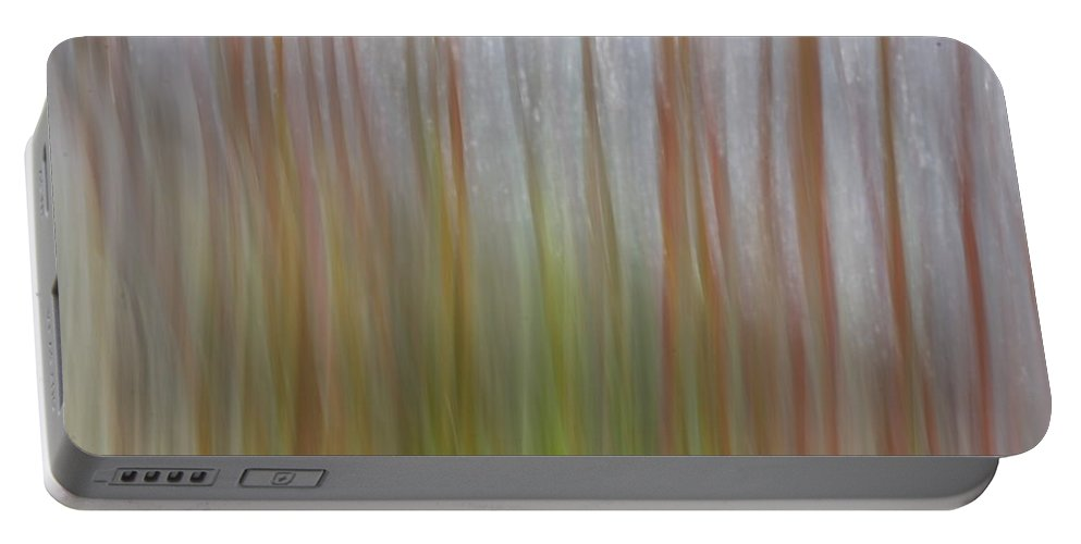 Swish2 Portable Battery Charger featuring the photograph Plant Stem Sweep by Dreamland Media