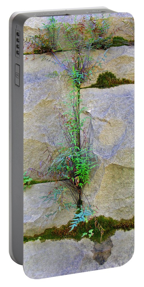 Plants Portable Battery Charger featuring the photograph Plants In The Brick Wall by Duane McCullough