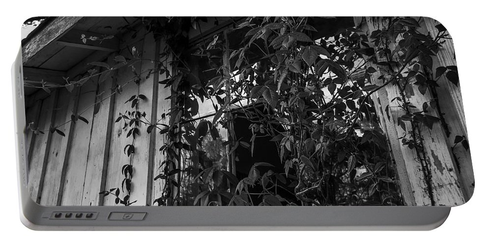 Abandoned Portable Battery Charger featuring the photograph Plants Through The Window by Ken Frischkorn