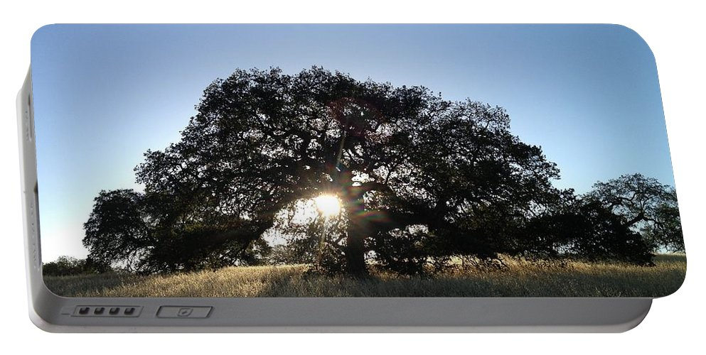 Plateau Oak Tree Portable Battery Charger featuring the photograph Plateau Oak Tree by Christine Owens