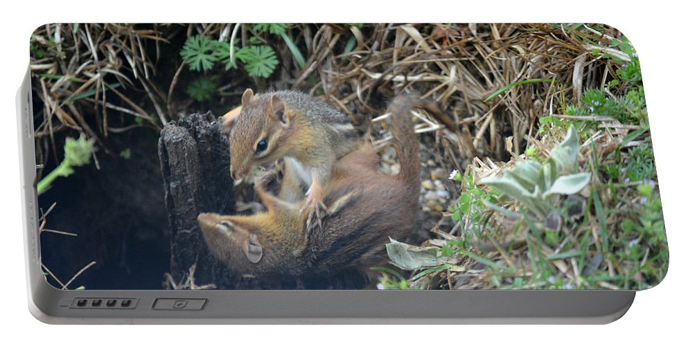 Chipmunk Portable Battery Charger featuring the photograph Play Time Photo A by Barb Dalton