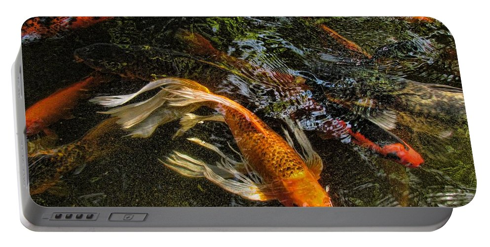 Koi Portable Battery Charger featuring the photograph Playing Koi With Me by Shannon Story
