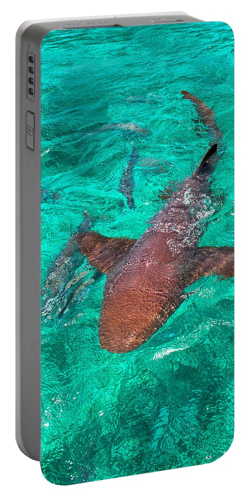 Belize Portable Battery Charger featuring the photograph I Have My Eyes On You by Kristina Deane