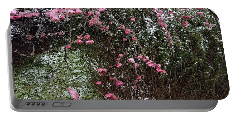Plum Blossom Portable Battery Charger featuring the photograph Plum Blossom In The Snow by Yinguo Huang