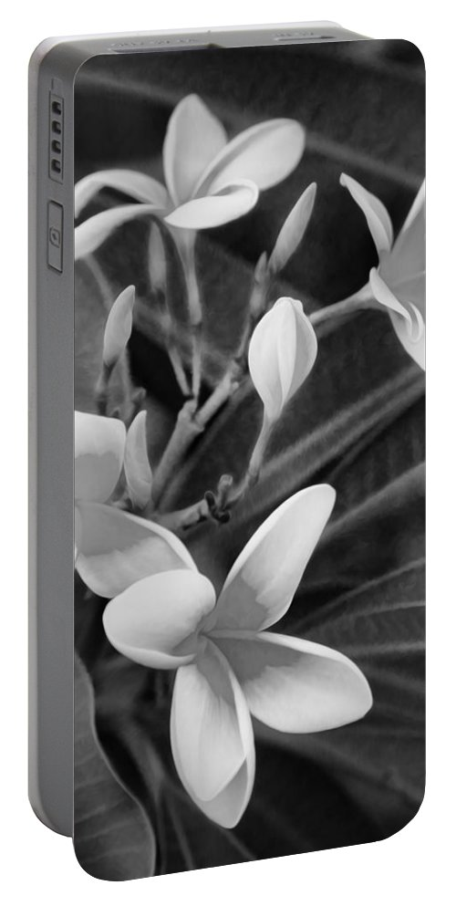 Flower Portable Battery Charger featuring the photograph Plumeria Frangipani Hawaiian Flower Bw by Rich Franco