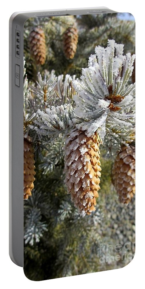 Pogonip Is A Season In The North West Usa Portable Battery Charger featuring the photograph Pogonip by Phyllis Kaltenbach