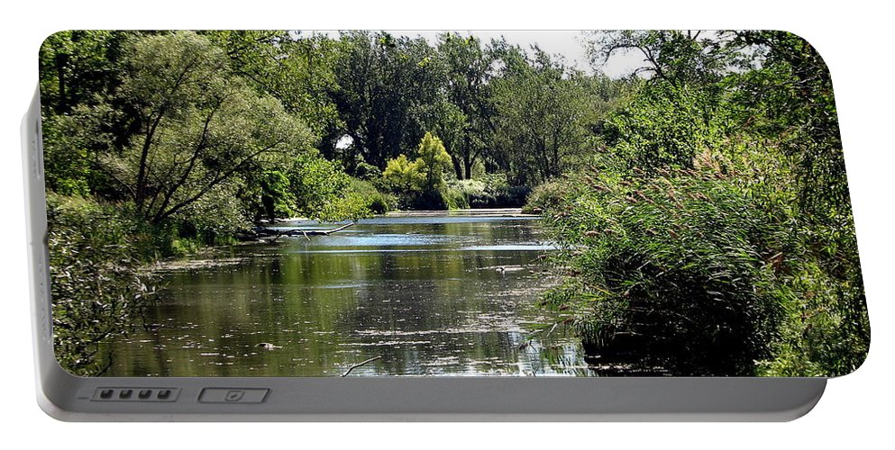 Snakeroot Trail Portable Battery Charger featuring the photograph Pond At Tifft Nature Preserve Buffalo New York by Rose Santuci-Sofranko