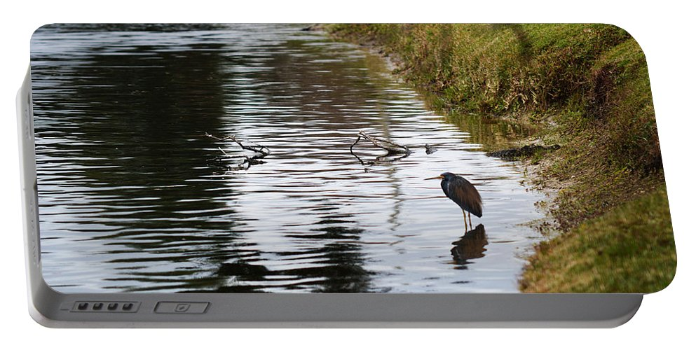 Florida Portable Battery Charger featuring the photograph Pond Life by Linda Kerkau