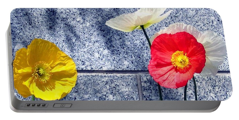Poppies And Granite Portable Battery Charger featuring the digital art Poppies And Granite by Will Borden
