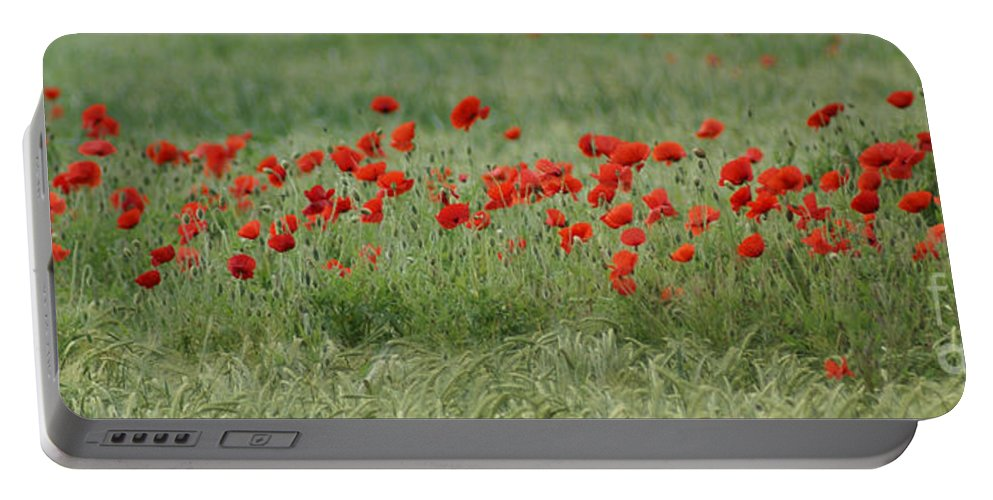 Poppies Portable Battery Charger featuring the photograph Poppies by Carol Lynch