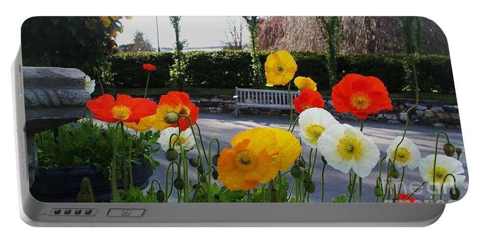 Poppies Portable Battery Charger featuring the photograph Poppies by Eric Schiabor