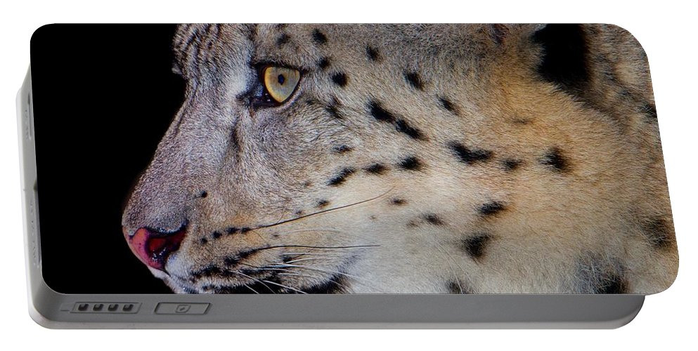 Leopard Portable Battery Charger featuring the photograph Portrait II Of A Snow Leopard by John Absher