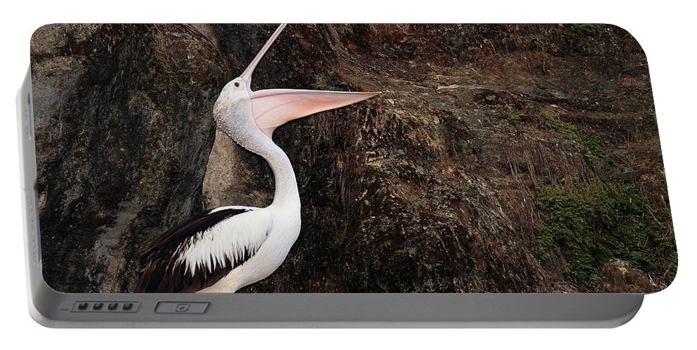 Pelican Portable Battery Charger featuring the photograph Portrait Of An Australian Pelican by Paul Fell