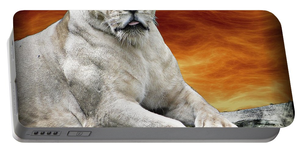 Lioness Portable Battery Charger featuring the photograph Posing Lioness by Ben Yassa