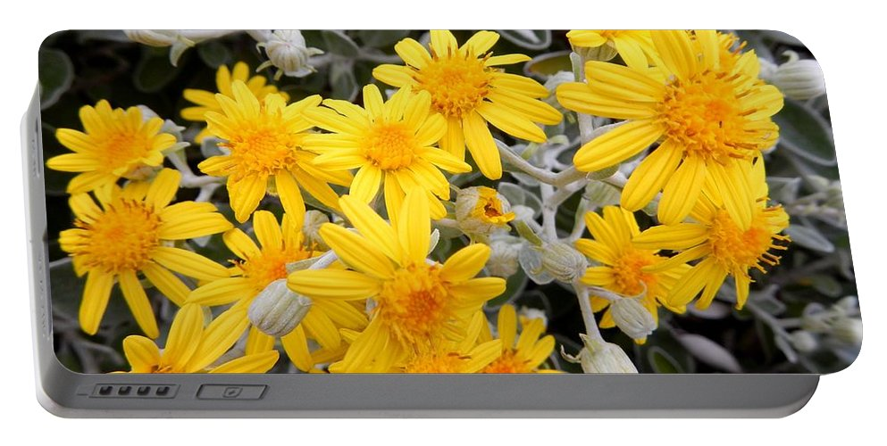 Nature Portable Battery Charger featuring the photograph Power Of Yellow by Loreta Mickiene