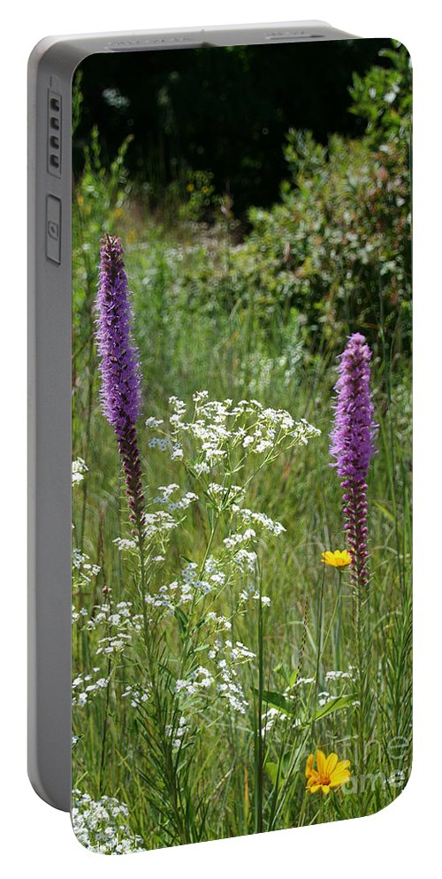 Flower Portable Battery Charger featuring the photograph Prairie Blossoms by Susan Herber