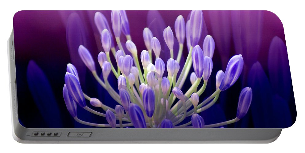 Agapanthus Portable Battery Charger featuring the photograph Praise by Holly Kempe