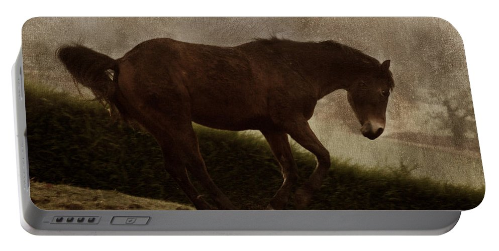 Prancing Horse Portable Battery Charger featuring the photograph Prancing Horse by Angel Ciesniarska