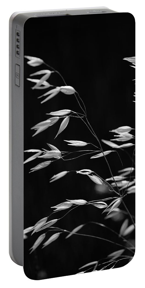 Black & White Portable Battery Charger featuring the photograph Prarie Grass by Peter Tellone