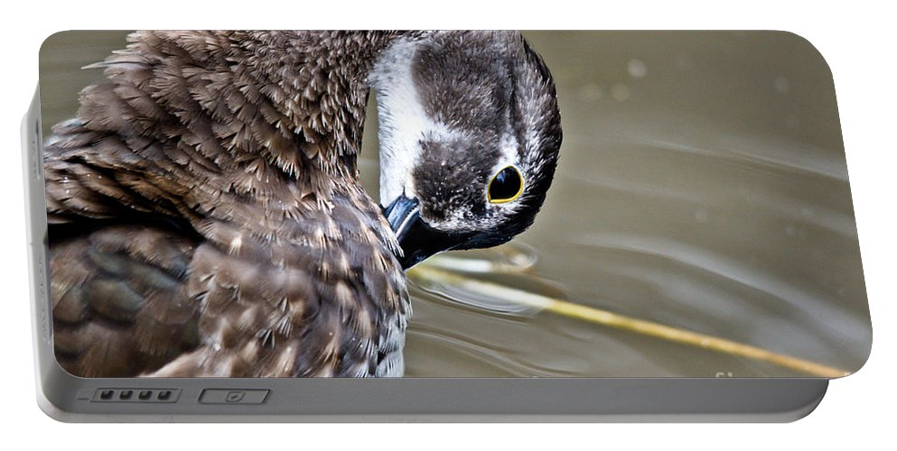 Portable Battery Charger featuring the photograph Prettily Preening by Cheryl Baxter