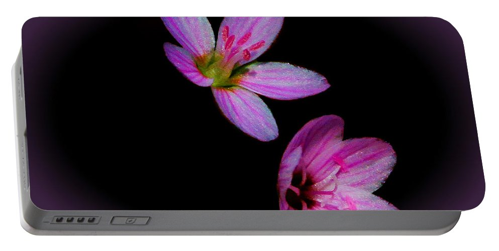 Flower Portable Battery Charger featuring the photograph Pretty In Pink by John Absher