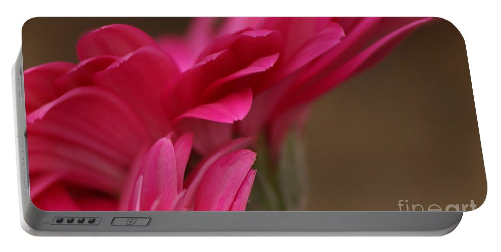Pink Portable Battery Charger featuring the photograph Pretty Petals by Carol Lynch