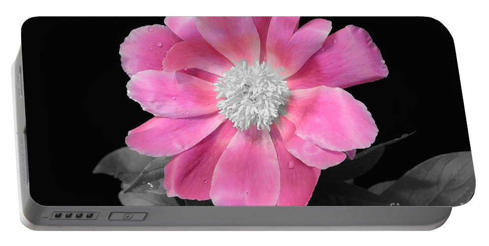 Pretty Pink Petals Portable Battery Charger featuring the digital art Pretty Pink Petals by Jeannie Rhode