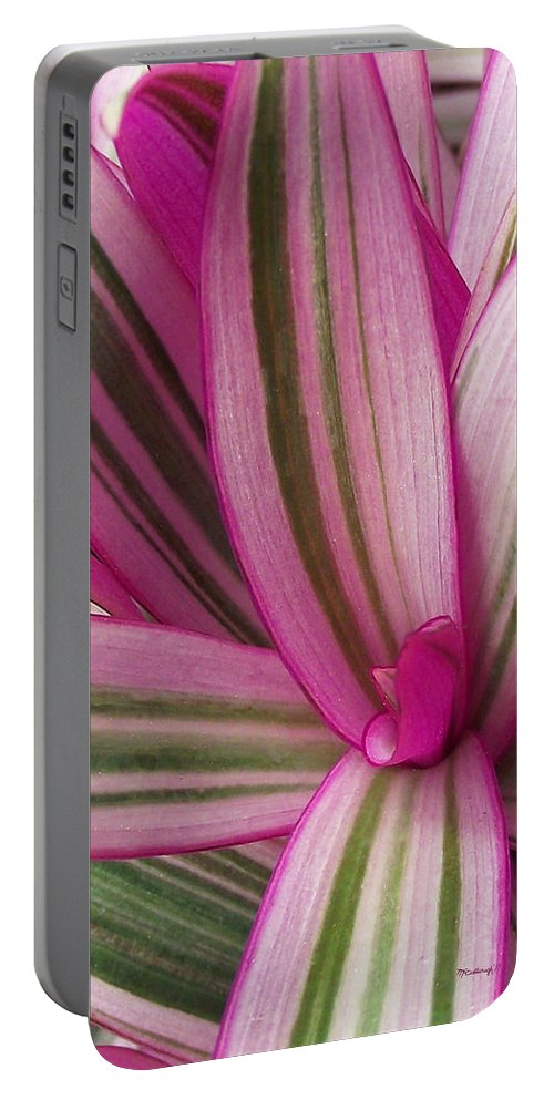 Plants Portable Battery Charger featuring the photograph Pretty Plant Leaves 2 by Duane McCullough