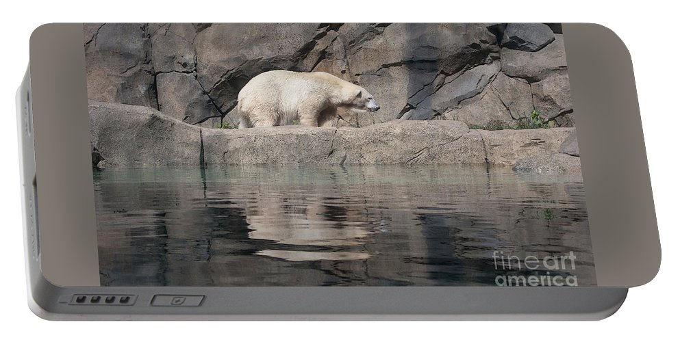 Ann Horn Portable Battery Charger featuring the photograph Pretty Poor Substitute by Ann Horn