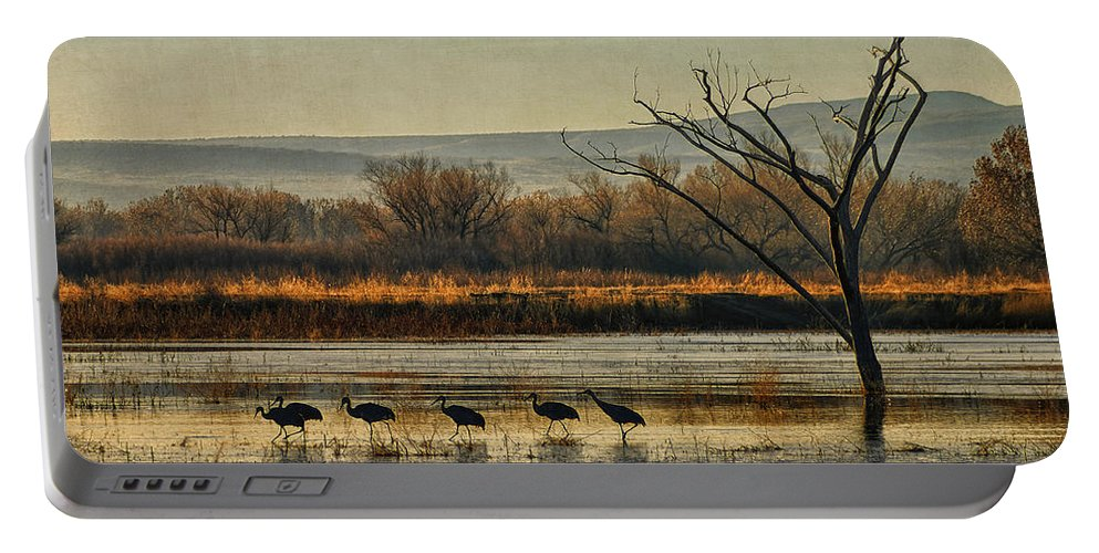 Sandhill Cranes Portable Battery Charger featuring the photograph Promenade Of The Cranes by Priscilla Burgers