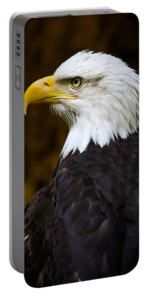 Eagle Portable Battery Charger featuring the photograph Proud Eagle Profile by Athena Mckinzie