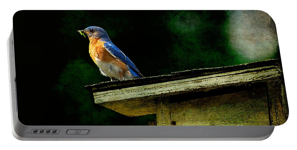 Lois Bryan Portable Battery Charger featuring the photograph Proud Provider by Lois Bryan